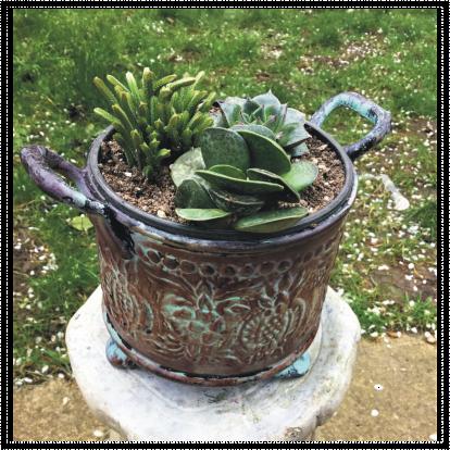 Antique Copper Effect Succulent Planter