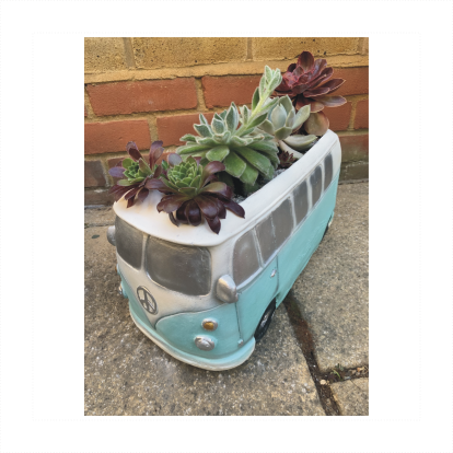 Classic Camper Planter with Succulents Assortment