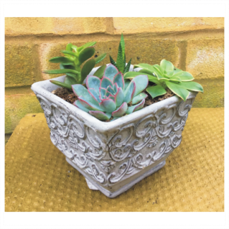 Ornate Vintage Effect Planter