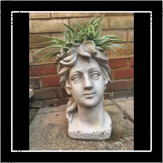Roman Venus Head Planter With Exotic Fern